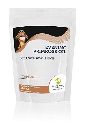 Nachtkerzenöl 500mg für Katzen und Hunde Haustiere 90 Kapseln Gesundheit Nahrung Ernährung Nahrungsergänzungsmittel gesund Stimmung (Haustiere Nahrung)
