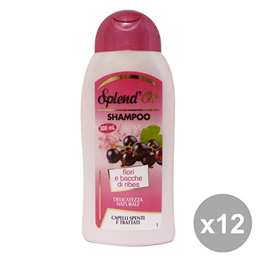 Set 12 SPLEND'OR Shampoo RIBES 300 Ml. Prodotti per capelli