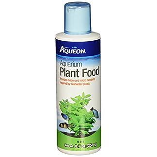 AQUEON Aquarium Aquarium Plant Food, 8.7-Ounce AQUEON Aquarium Aquarium Plant Food, 8.7-Ounce 41ODHOuXVAL
