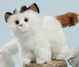 (EBO 50025 - Katze, 17cm lang, stehend, weißer Softplüsch, mit braunem Schwanz, schwarze Ohren)