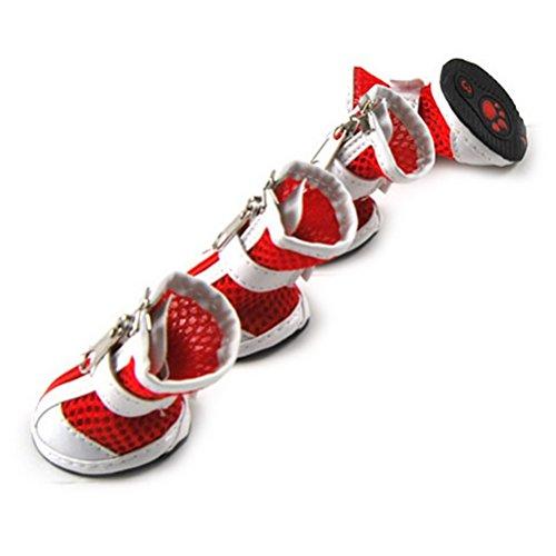Zunea Botas de Perro Transpirables de Malla de Aire Zapatos para Perros Ajustable Velcro y Sandalias con diseño de Cremallera Frontal con Suela de Goma Protectores de Huellas para Calor Verano