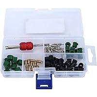 Hilitand 71 Piezas de válvula de Aire Acondicionado Core A/C Repair Tool 10 Piezas Value Cores + 50 Piezas de Juntas de Manguera + 10 Piezas de valores
