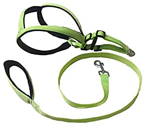 Paws for a Cause Soft Padded Body Set-Leash & Harness- 0.75 - Black - Small