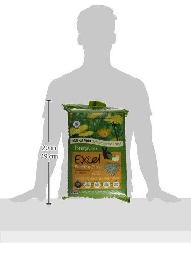 Burgess Excel Forage Dried Grass, 1 kg 6