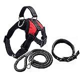 Hundeleine, Dreiteiliger Anzug (Brustgurt + Halsbänder + Seil) Sicherheits-Hundeleine Für Kleine Mittelgroße Hunde Leine (Farbe : #1, größe : XL)