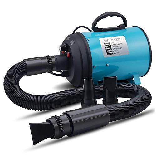 ACZZ 2200 W Leistung Stufenlos regelbare Geschwindigkeit und Temperatur Haustierpflege-Haartrockner mit 3 verschiedenen Düsen, Hunde- und Katzen-Fön, Pflege-Haargebläse Geräuschlos (Temperaturen Haartrockner 3 3 Geschwindigkeit)