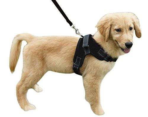 YJZQ No-Pull Hundegeschirr Nylon Halsband Hund Anti-Puffer Hundehalsung Plush Vest Kette Hund Haustier für mittelgroße Hunde Bulldogge Golden Retriever Schlittenhund -