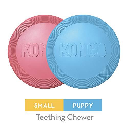 KONG - Puppy Flyer - Disco volador de caucho para dentición - Cachorro mini (varios colores)