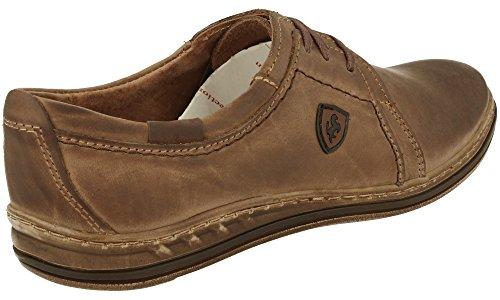 Polbut 343 Classic Homme Cuir Chaussures À Lacets Marron