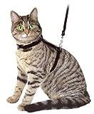 Ducomi® Silvestro-Pechera ajustable y guinzaglio 105cm de nailon para gatos, conejos y cachorros negro talla unica