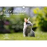 Calendrier 2020, motif lapins et lapins - Format A3-1 carte de vœux et 1 carte de Noël