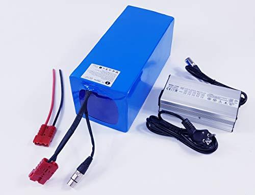 TZIPower - Batería para Bicicleta eléctrica 48 V