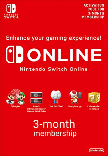 Nintendo Online Video Game Services