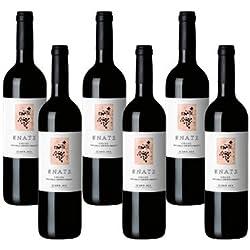 Enate crianza - Vino Tinto - 6 Botellas