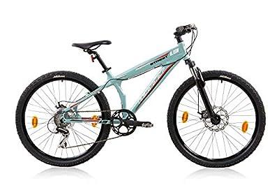 tretwerk DIREKT gute Räder Leader Street 1.2 Dirt Mountainbike, Jungen-Herren-Fahrrad mit Kettenschaltung