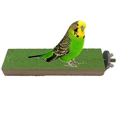 baleba 1pcs Sitzstange aus Holz Plattform Vogel Papagei Ara African Greys Wellensittiche Sittiche Nymphensittiche Sittiche Aras Unzertrennliche Finch Käfig Zubehör