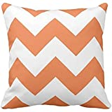 Chevron Pillow with Celosia Orange Zigzag case 2424