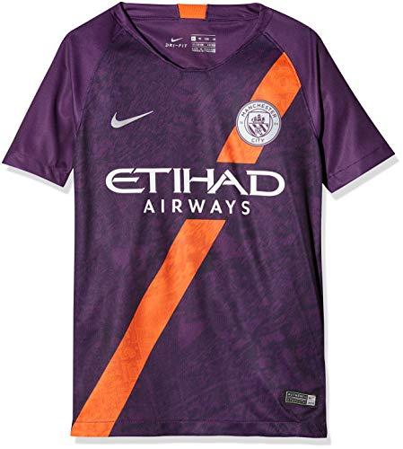 er City FC Breathe Stadium 3rd T-Shirt, Night Purple/Reflective Silver, M ()