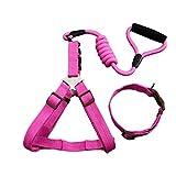 Kleine mittlere Große Hundeleine Laufende Haustierwaren aus Nylon Hundegeschirr Halsband Hundezubehör (Color : B, Größe : S)