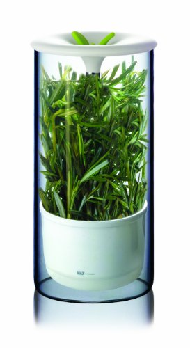Art and Cook Fresh Herb Keeper by Art and Cook Herb Keeper
