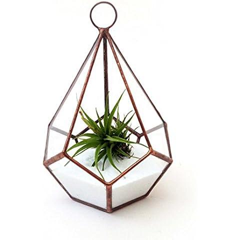 Goccia piccolo con Loop geometrico vetro terrario + Air Piante e bianco sabbia/Moderno Vaso/giardinaggio Indoor/Fatto A Mano, Vetro, Bright Copper Teardrop Small with Loop + Air Plant & Sand,