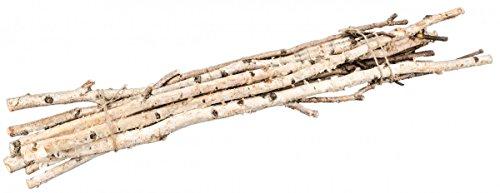 NaDeco Birkenzweige 1m im Bund mit 10 Stück Birkenzweig Birkenäste Birken Bündel Birken Zweige Birken AST Birkenstamm Birken Deko