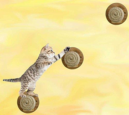 3er Set Katzen Catwalk Stufen Bibi Weiss