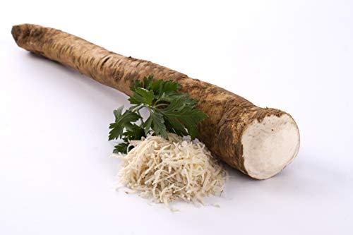 Meerrettich | Kren | Horseradish - Frische Stangenware - naturbelassen [pro Kilo]