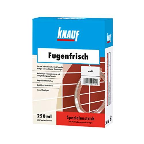 Knauf Fugen-Frisch zur Farb-Auffrischung alter Fugen - Spezialanstrich zum Auffrischen oder Färben verblasster Zement-Fugen: der Spezial-Reiniger beugt Schimmelpilz-Befall vor, Weiß, 250-ml