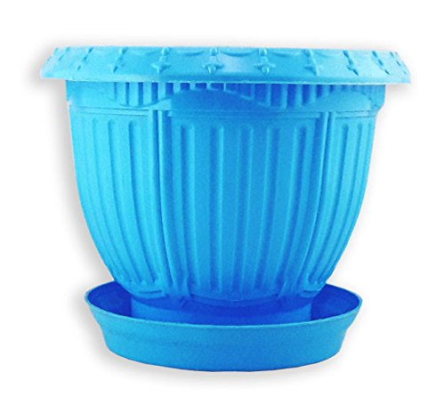 Dineshalini Champion Blue Garden Pot with Planter Tray , Garden Container, Home Garden, Champion Pot, Indoor Pot, Outdoor Pot, Multicolor Pot,Blue Pot, Base Tray, Coaster, Vertical Garden Pot, Plastic Pot, Garden & Outdoors, Flower Pot, Plant Stand,Gift Pot  available at amazon for Rs.249