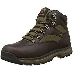 Timberland Chocorua Trail Goretex Waterproof, Botas Chukka Para Hombre, Marrón (Dark Brown/Green A66), 43.5 EU