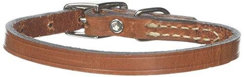 Circle T Leather Coastal Pet Products Kreis T Eiche gegerbtes Leder Hundehalsband, Town, 3/20,3x 25,4cm Tan