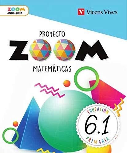 MATEMATICAS 6 ANDALUCIA TRIM+ ACTIVAMAT (ZOOM)