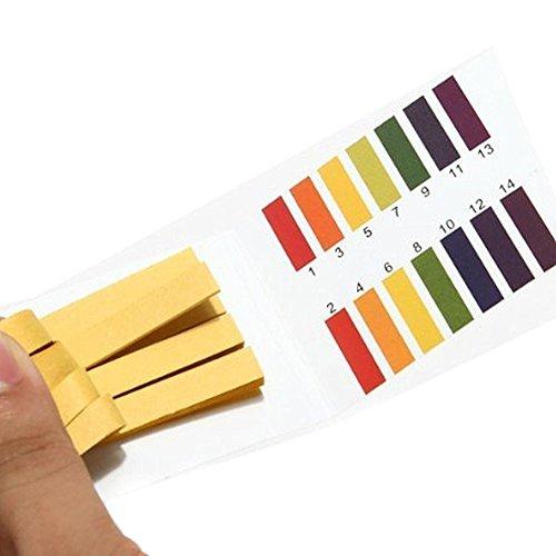 PH 1-14 Testpapier Litmus Streifen Tester Wasser Kosmetik Acid Alkaline Test Kit 480pcs Ideal zum Testen von vielen üblichen alltäglichen Substanzen, einschließlich feuchtigkeitsspendende Seife, Zitronensaft, Milch, flüssiges Waschmittel ... etc