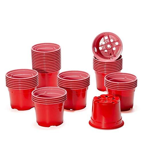 Pot de culture DUO 10.5 cm rouge (x100)