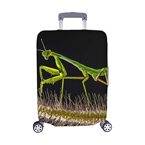 EIN verwundeter Kleiner Mantis-Muster Spandex-Trolley-Koffer Reisegepäck-Schutzkoffer-Abdeckung 28,5 X 20,5 Zoll