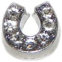 8eb3f94db101 Herradura de caballo suerte boda Diamante Flotante Charm plata Tone – Púa