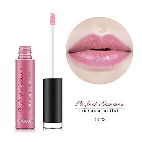 Perfect Summer Waterproof Lip Gloss For Girls Long Lasting Makeup
