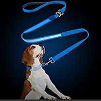 Laisse LED Clignotant, PETBABA 1.5m Longue Nylon Laisse de Dressage avec Poignée Rembourrée pour Moyen à Gros Chiens
