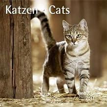 Katzen - T & C-Kalender 2011
