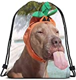 "Julygood Funny Dog Wearing Cute Halloween Costume Animals Wildlife Holidays 3D Print Drawstring Backpack Rucksack Shoulder Bags Gym Bag for Adult 16.9""X14"""