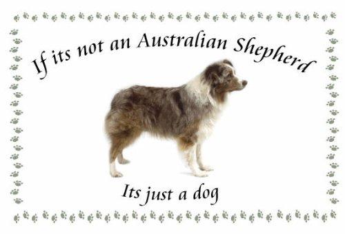 Australian Shepherd-Novelty Cane Portachiavi-Se non