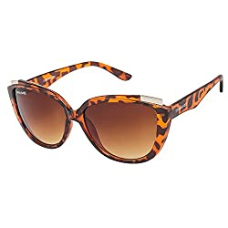 Danny Daze Oversized Sunglasses (Brown) (D-2533-C3)