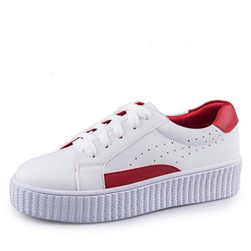 Zapatos Primaverales Redondos / Zapatos Casuales De Encaje / Zapatos Espesos Plataforma / Zapatos Finos De Mujer A