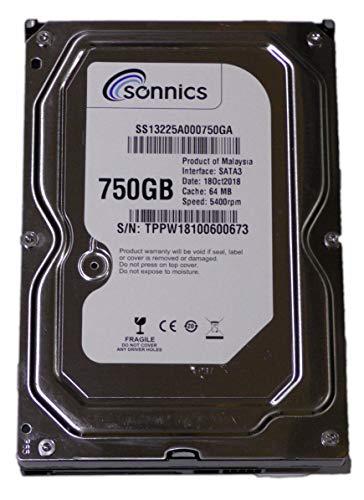 Sonnics Festplatte für Überwachungskamera, 750 GB, 8,9 cm (3,5 Zoll), SATA, CCTV-System, DVR -