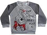 Winnie the Pooh Pullover Disney Jungen (Grau, 62-68)