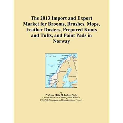The 2013 Import and Export Market for Brooms, Brushes, Mops, Feather Dusters, Prepared Knots and Tufts, and Paint Pads in Norway