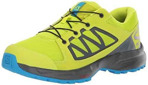 Salomon Kinder XA Elevate J, Trailrunning-Schuhe, grün (acid lime / urban chic / hawaiian surf), Größe 36