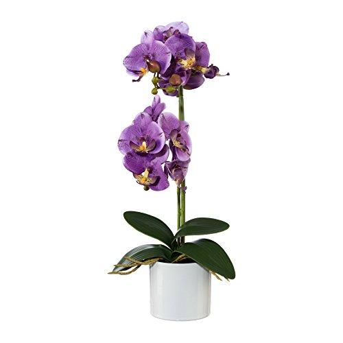 Kunstpflanze  Pflanzgefäß inklusive