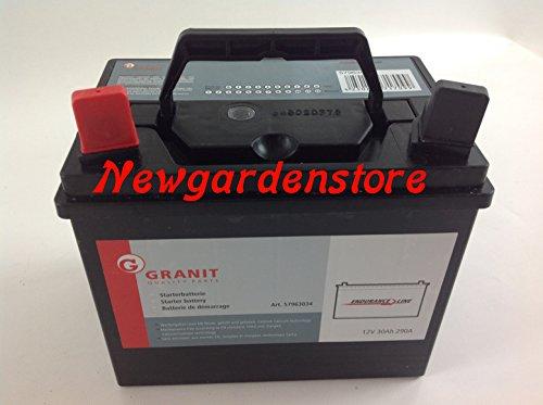Newgardenstore Batteria avviamento Elettrico trattorino tagliaerba rasaerba 12V 30Ah 63034 SX +